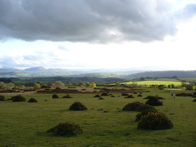 The Begwyns - south west edge