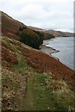 NY4714 : North Western Bank of Haweswater by Steve Partridge
