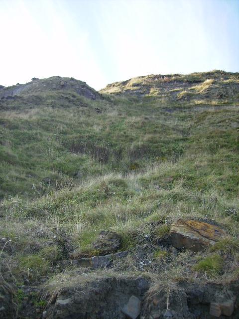 Unstable cliff north of Hayburn Wyke