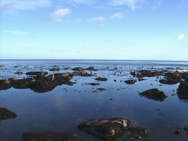 Low tide north of Herbert Hole