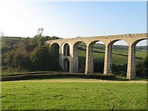 SY3192 : Cannington Viaduct by M Etherington