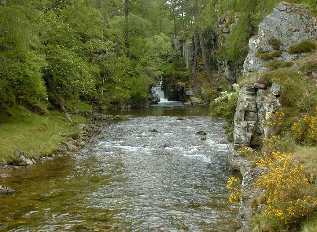 Below the Linn of Quoich