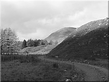 NN7933 : Glen Almond road by Richard Webb
