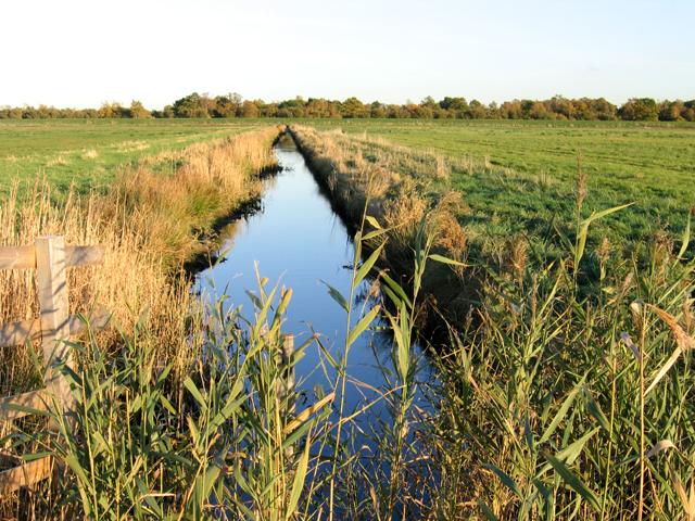 Drain in Woodwalton Fen, Cambs