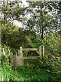 TG4810 : Gate on footpath by Evelyn Simak