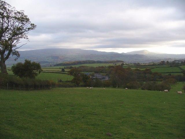 Overlooking Llwynpenderi Farm