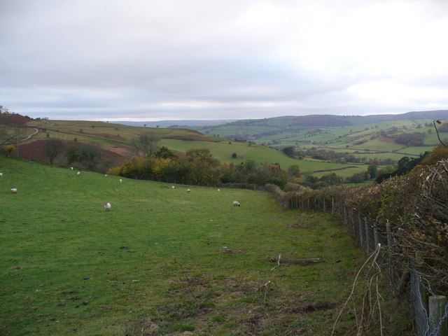 The lane west of Pentre
