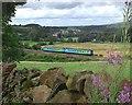 NY5044 : The Settle and Carlisle Railway at Baron Wood by Don Burgess