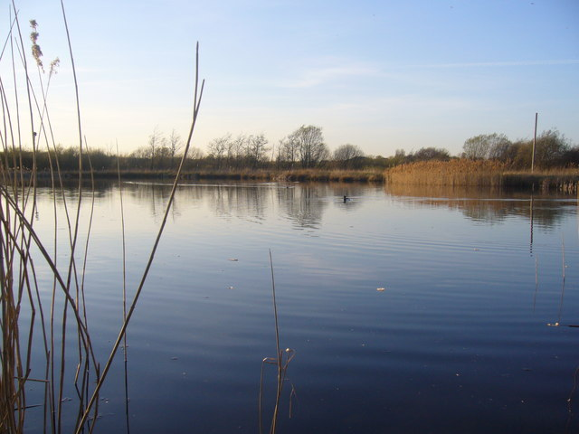 Rainton Meadows Nature Reserve