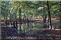 TL9285 : Black Plantation by Bob Jones