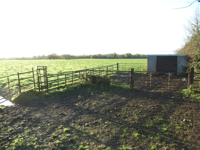 Livestock Enclosure Near Robinstown, Co. Meath