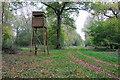 TF0901 : Sutton Wood, near Upton by Julian Dowse