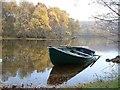 NH4256 : Loch Achilty by sylvia duckworth