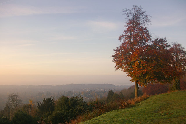 Sunrise at Reigate Hill