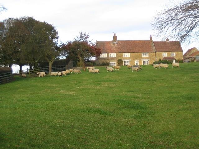 Low Farm near Brandsby