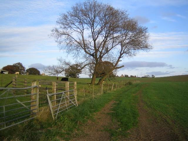Field corner on Bridleway south of Low Farm