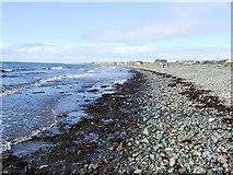 NX1896 : Shingle beach near Girvan by Roger Nunn