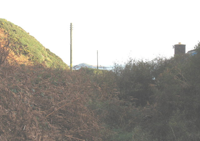 Overgrown path down to Porth Simdde