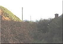 SH1626 : Overgrown path down to Porth Simdde by Eric Jones