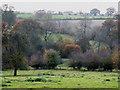 SO6589 : Farmland near Neenton, Shropshire by Roger  Kidd
