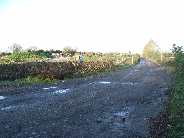 Lane at Boyerstown, Co. Meath