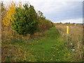 TL2043 : Biggleswade: Footpath near Top Field Farm by Nigel Cox