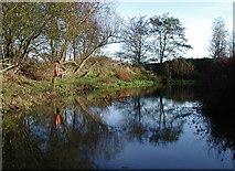 TA2044 : Best Pond, Rolston by Paul Glazzard