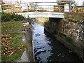 TL1843 : River Ivel Navigation old bridge at Holme by Nigel Cox