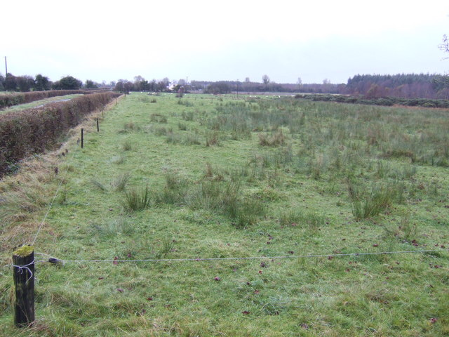 Rough grazing land in the centre of Meath