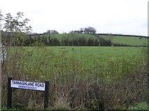 H7447 : Derrygoody Townland by Kenneth  Allen