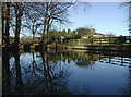 TA1843 : Hatfield village pond by Paul Glazzard