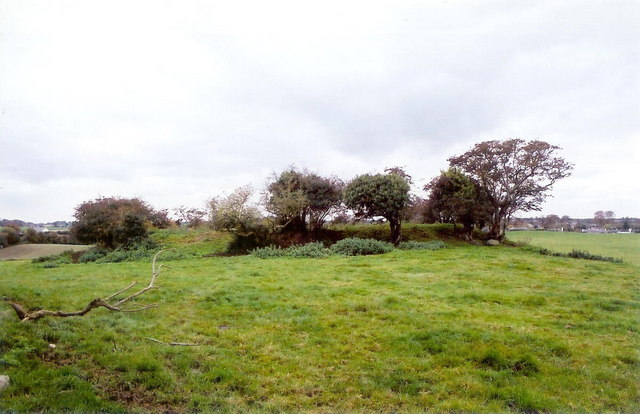 Ringfort at Rathbrist, Tallanstown, Co. Louth