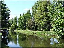 TL0506 : Grand Union Canal by Al Wilson