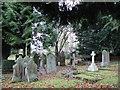 NY9365 : Churchyard, St. John Lee (2) by Mike Quinn