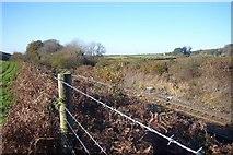 SX5756 : Railway line at top of  Hemerdon Bank by Nigel Mole