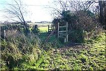 SX5756 : Stiles on Venton footpath by Nigel Mole