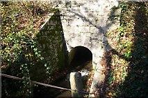 SX5856 : Culvert  through railway embankment by Nigel Mole