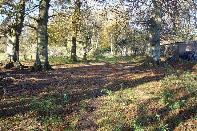 Permissive Footpath leading to Walks Brake wood