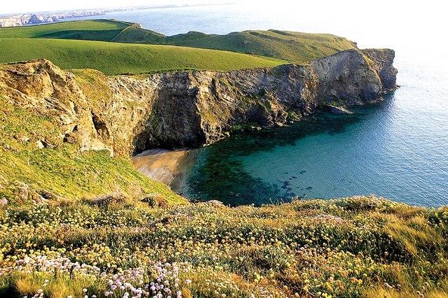 Beacon Cove