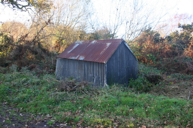 The Old Tin Shack