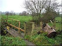 H5070 : Donaghanie / Lisboy Townlands by Kenneth  Allen
