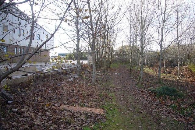 Path behind Langage Science Park