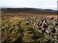 SX7475 : Granite wall near Rippon Tor by Derek Harper