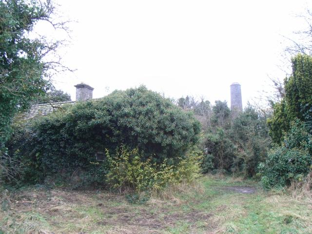 Derelict Cottage Near Donaghmore Round Tower