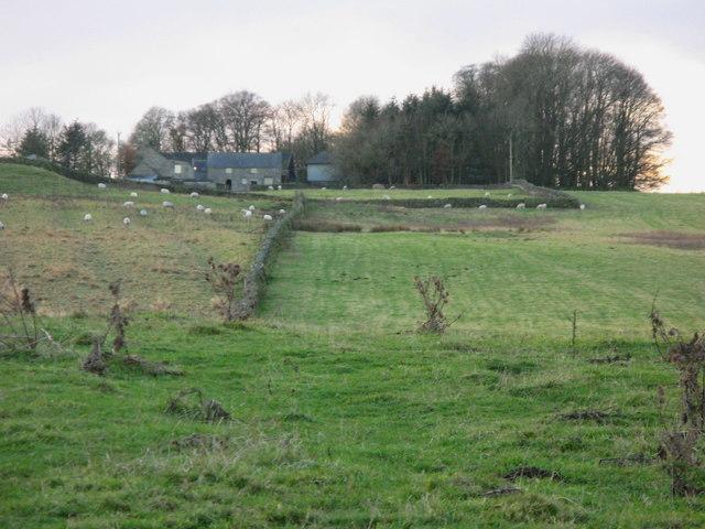 Hawick, near Kirkwhelpington