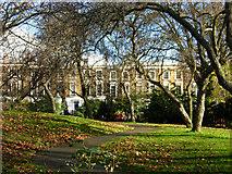 TQ3084 : Thornhill Square, Barnsbury by Stephen McKay