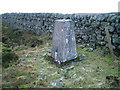 NY5652 : O.S. Trig point on Cardunneth Pike by David Brown