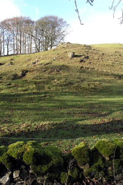 Limestone hillside and mossy wall