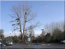 SU3521 : Empty Car Park, Romsey by Rosemary Oakeshott