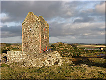 NT6334 : Smailholm Tower by Walter Baxter